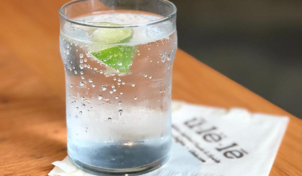 Wenn Du pflanzlich Gewicht verlieren willst, dann trinke viel Wasser