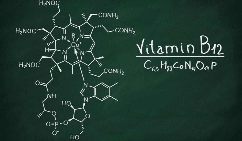 Vitamin B12 ist nicht in pflanzlichen Lebensmittel enthalten. Bedeutet das automatisch vegane Mangelernährung?