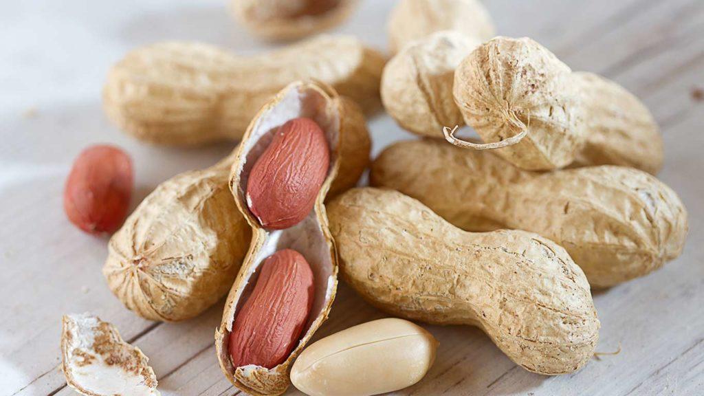 Erdnüsse sind ein super veganes Protein