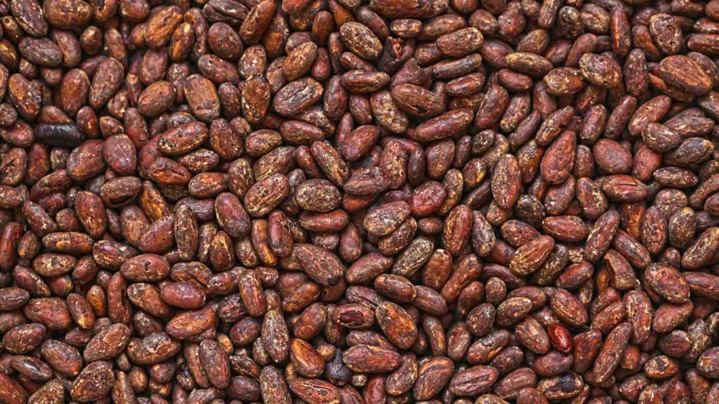 Vegan Gewicht verlieren Sojaprodukte essen