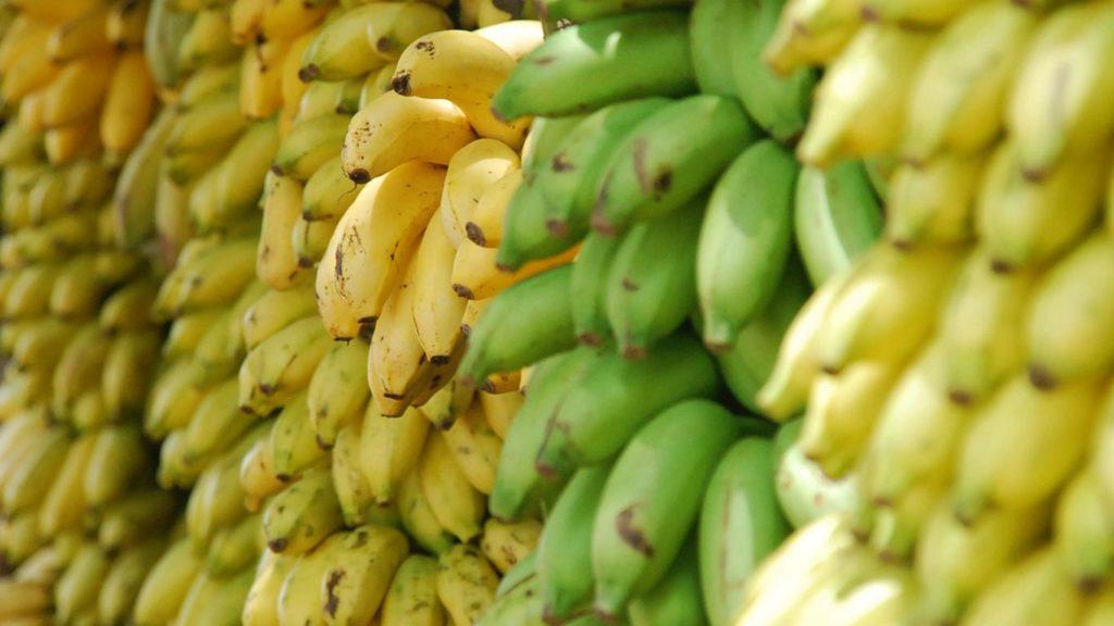 Bananen kannst du so vegan einkaufen