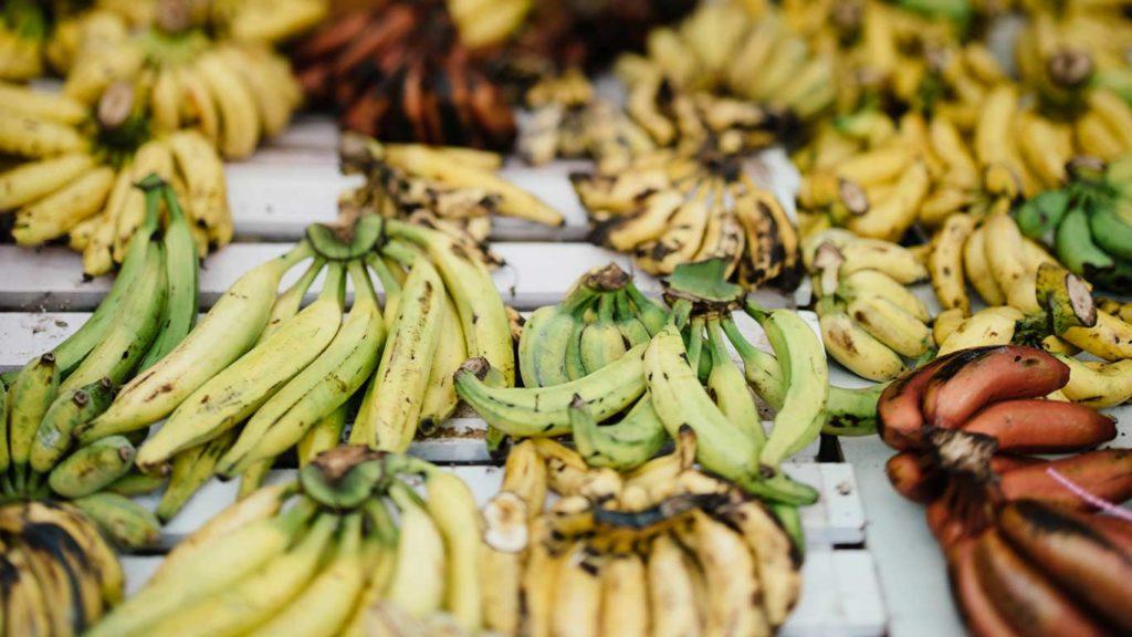 pflanzliche ernährung ist gesund, da bananen die Aufnahme von calcium unterstützen