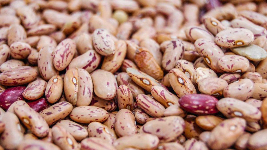gesunde pflanzliche ernährung beinhaltet bohnen zu essen, da sie viele nährstoffe enthalten