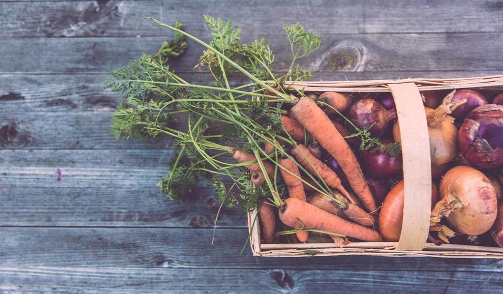 Wenn Du anfängst pflanzlich zu kochen, lege Dir eine Speisekammer zu. So hast Du vieles direkt zur Hand und ersparst Dir das Einkaufen