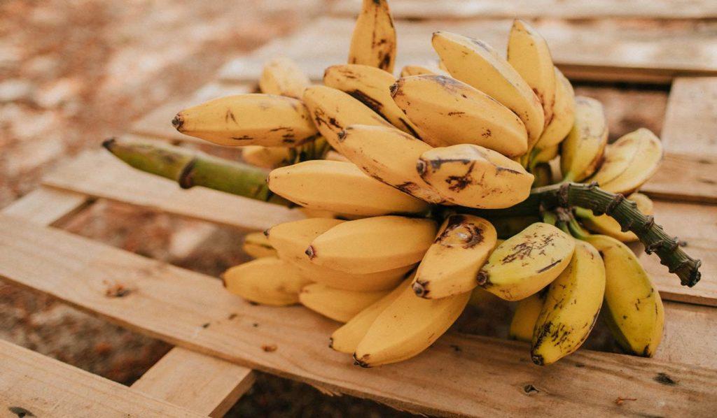 Banane ist ein guter Calciumlieferant, wenn Du Deine Ernährung umstellst ist das gut zu wissen