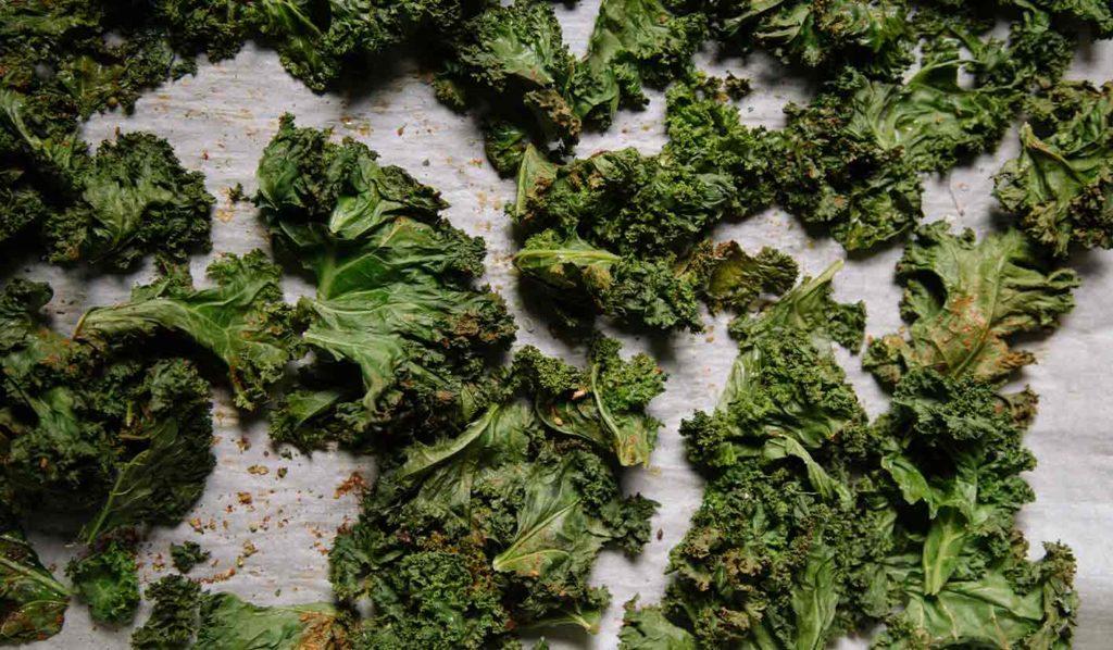 Kale Chips sind die beste Wahl, wenn Du auf Chips während des Abnehmens nicht verzichten kannst