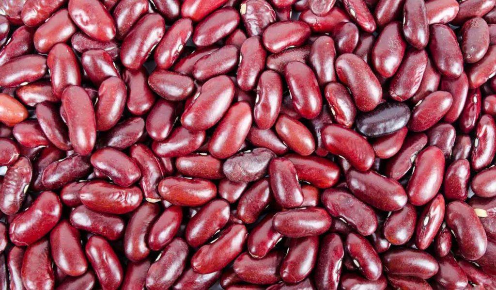 Schwraze Bohnen sind tolle Sattmacher, die das Abnehmen begünstigen