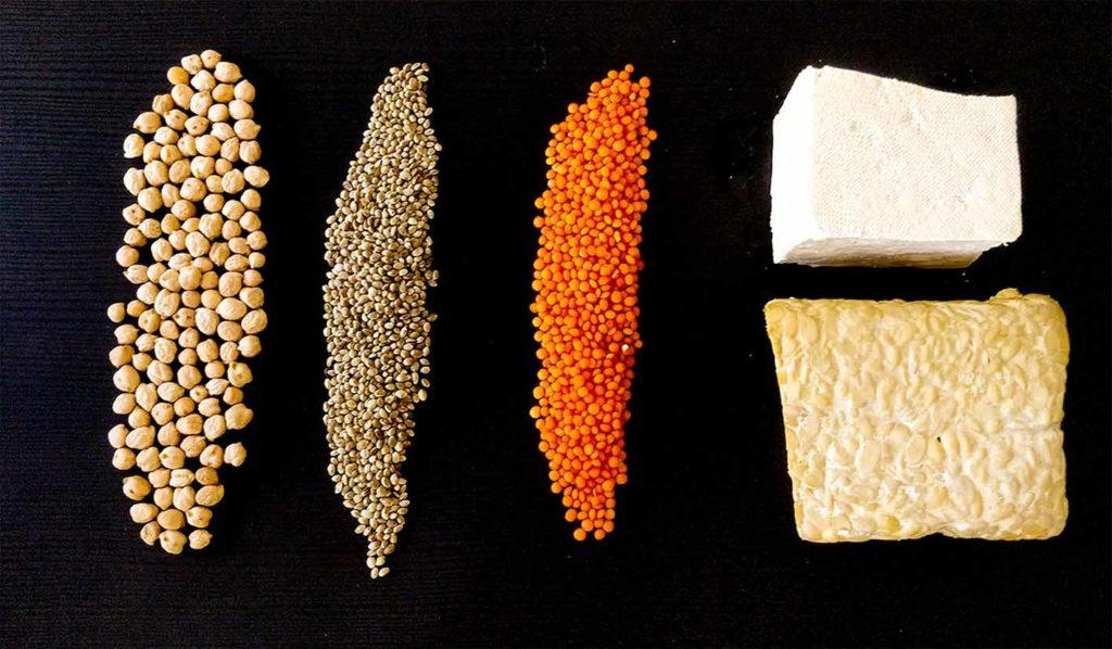 Pflanzliche Proteinmischungen sind gut für vegan für Einsteiger geeignet, da sie alle Aminosäuren enthalten
