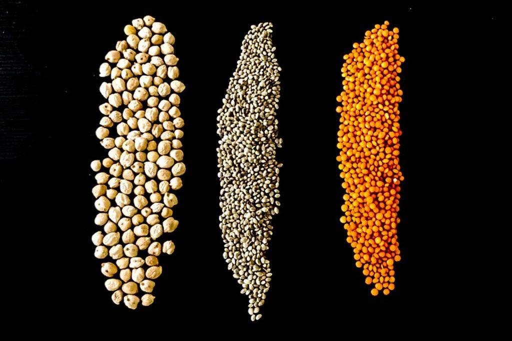 Hülsenfrüchte sind eine gute Alternative zu Soja und enthalten viel Eiweiß