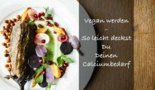 Du willst Deine Ernährung auf vegan umstellen? So kannst Du Dein Calciumbedarf decken
