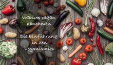 Warum mit pflanzlicher Ernährung abnehmen?