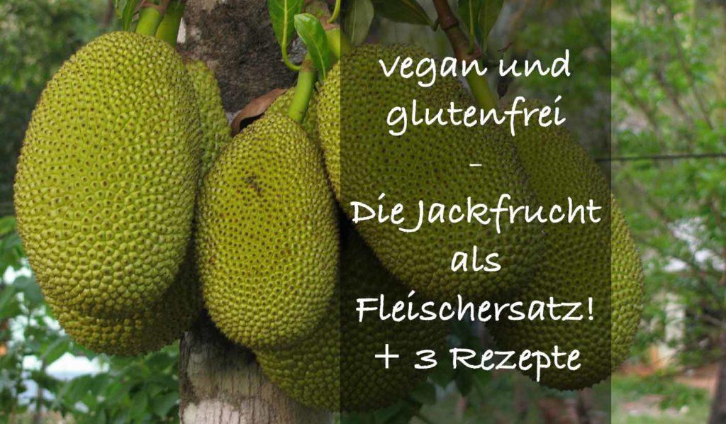 Jackfrucht ist vegan und glutenfrei und zudem kalorienarm